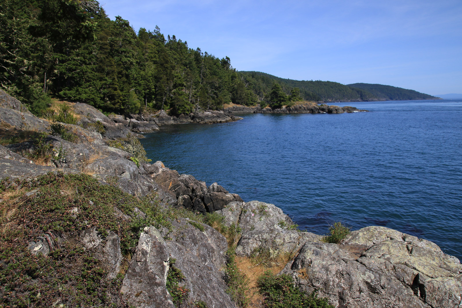 Top 5 Easy Hikes Near Victoria