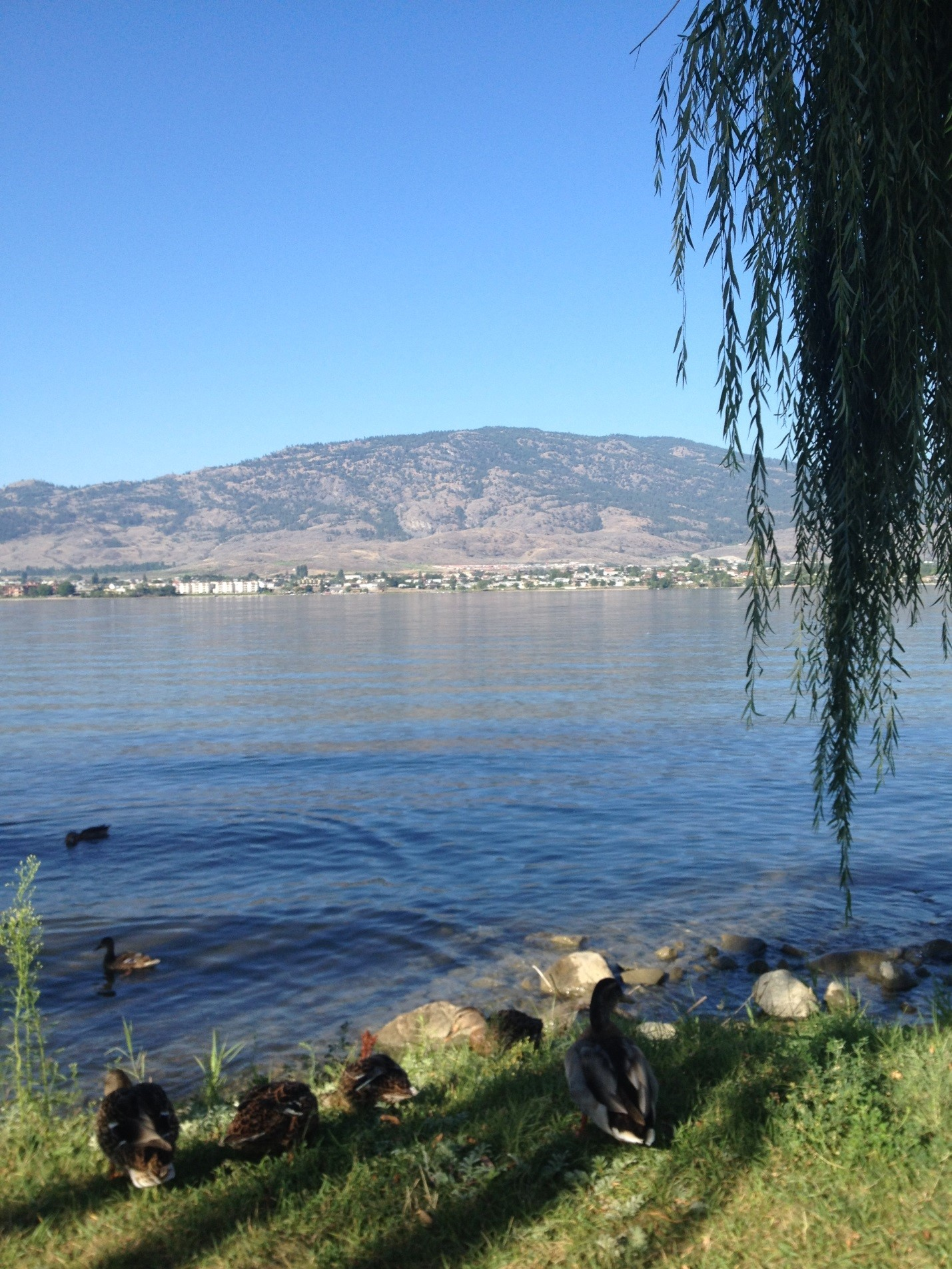 Osoyoos here we come… Circle Tour Day 2 and 3