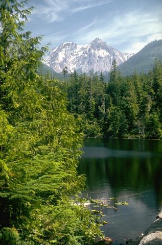 Hidden Gem Waterways for Fishing in British Columbia
