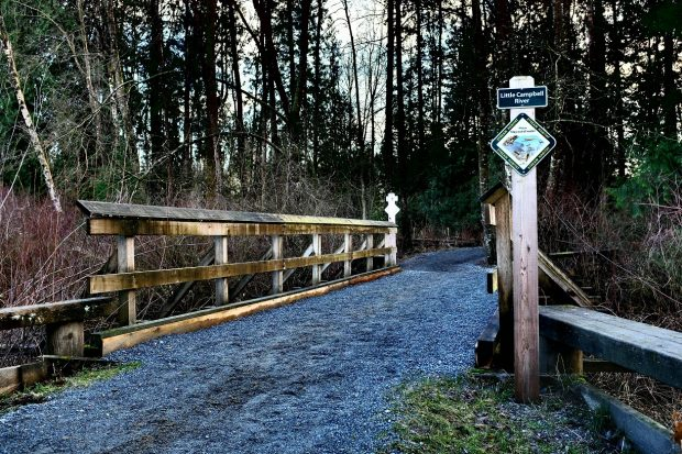 Horse Trail over Little Campbell Bridge