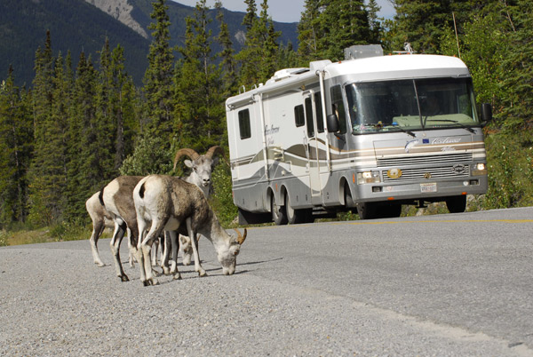 British Columbia is Best for Hiking, Watching Wildlife and Camping