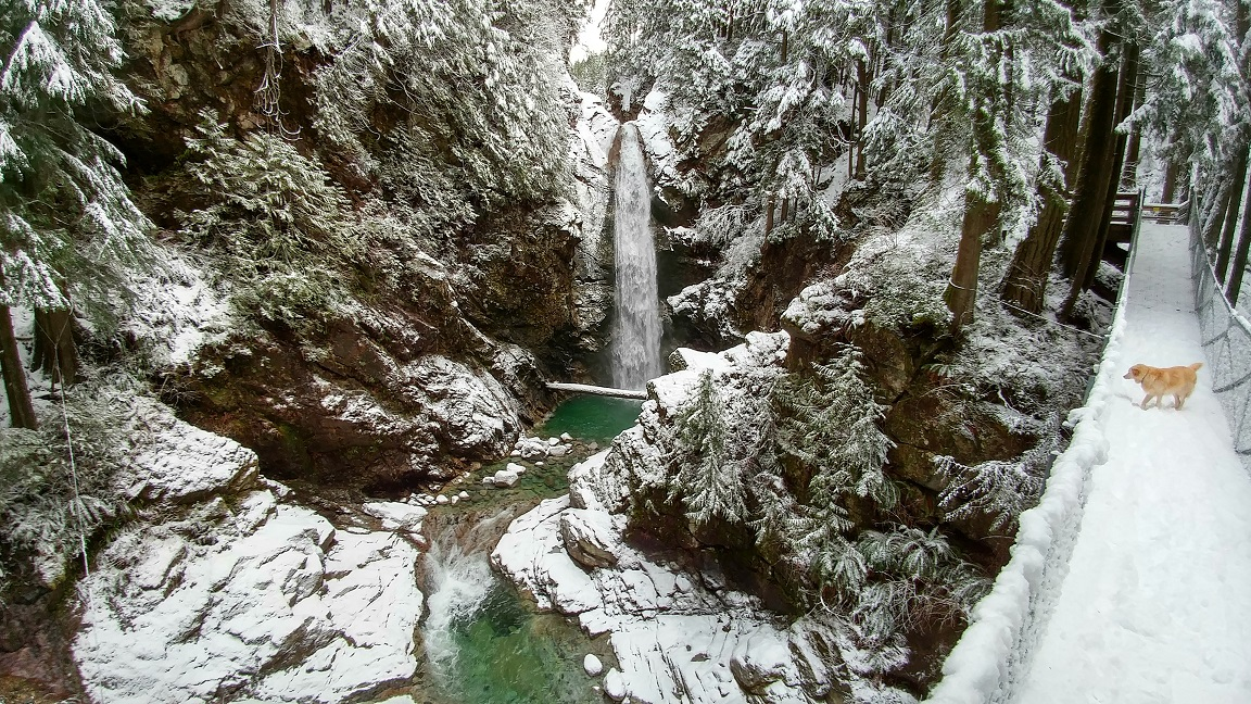 Chasing Winter Waterfalls at Cascade Falls Regional Park, BC