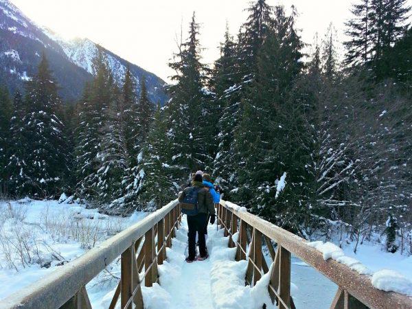 Bridge Crossing the Skagit River