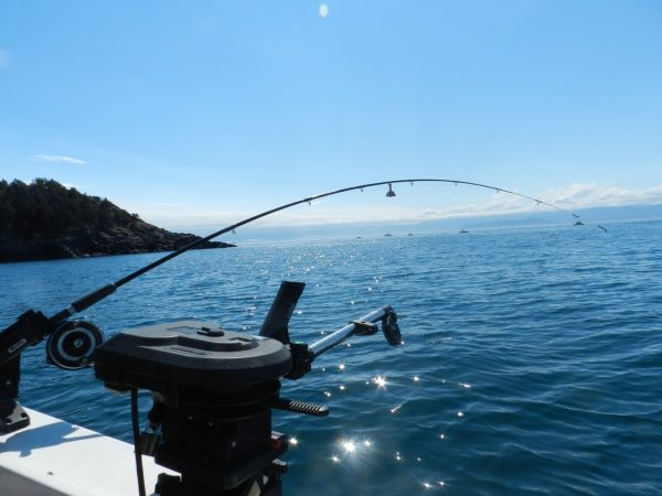Approaching Bechy Head with Olympic Mountains in the Background. A Popular Fishing Spot for Chinook and Coho