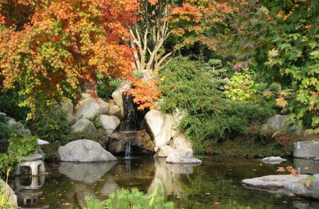 Japanese Friendship Garden, Hope