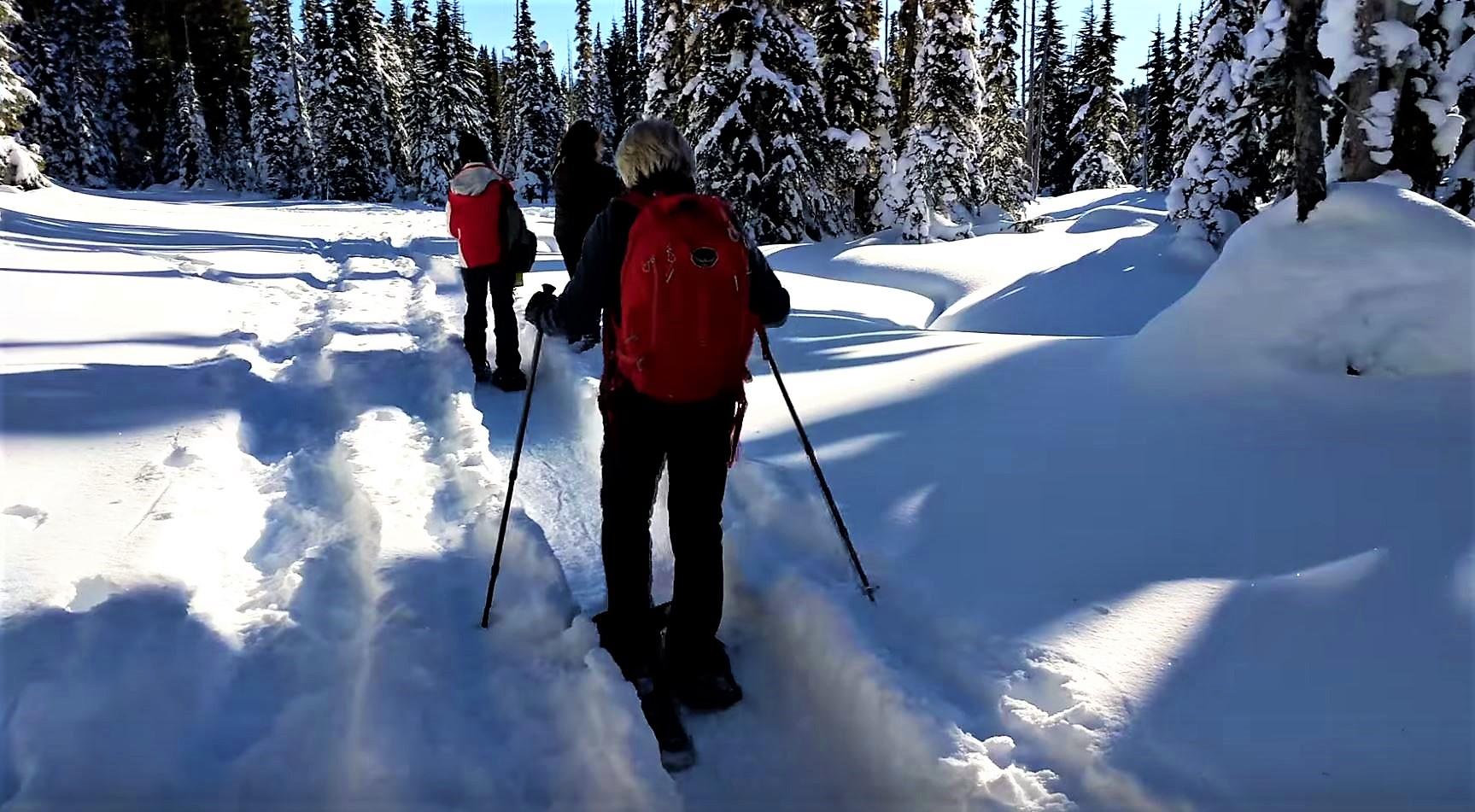Snow Shoeing, Mt Washington Alpine Resort, Courtenay, BC