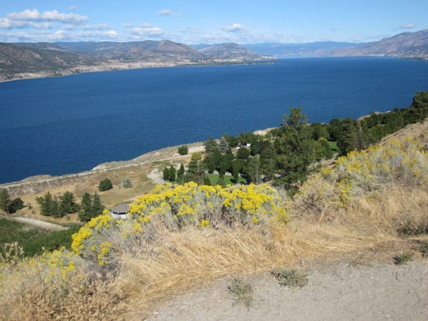 Looking North on Okanagan Lake from Munsen Mountain, Penticton