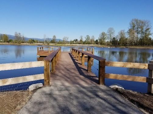 Visit the New Blakeburn Lagoons Park in Port Coquitlam, British Columbia