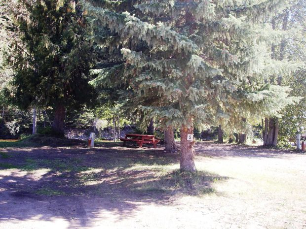Natural landscape at the Wells Gray RV Park in Clearwater.