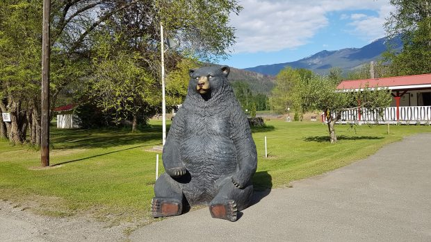 A bear statue at the Rivermount Motel B&B and RV Park in Little Fort.