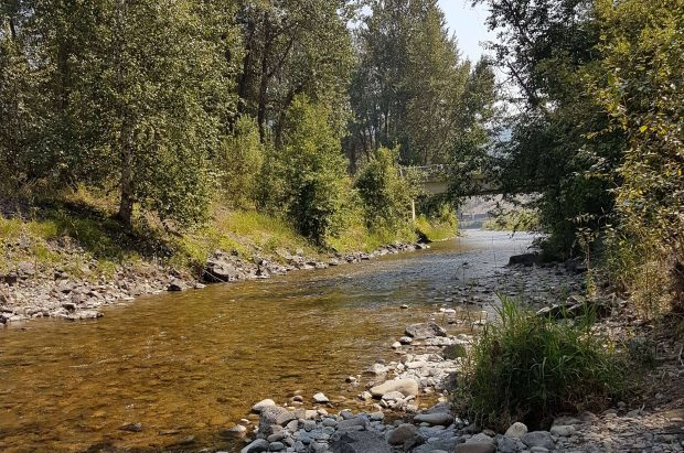 A creek near the Rivermount Motel B&B and RV Park in Little Fort.