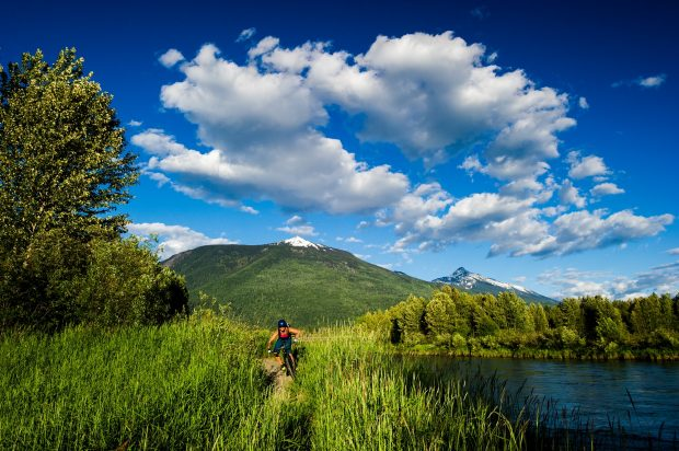 Mountain Biking in Revelstoke.