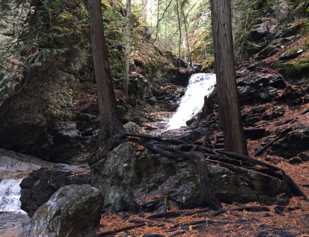 A waterfall in the forest near Cedar Falls Campground and RV Park in Vernon.