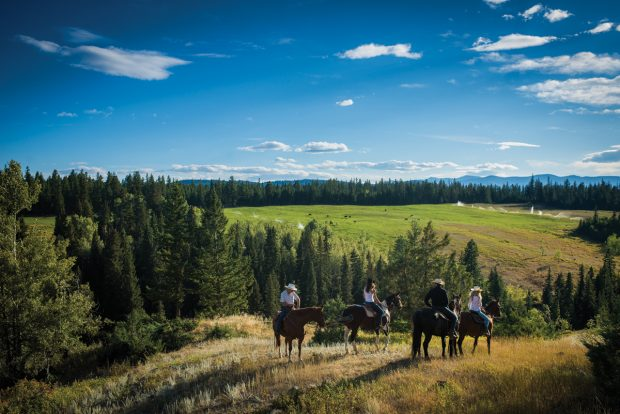 Horse Riding in the Cariboo. Photo: Blake Jorgenson
