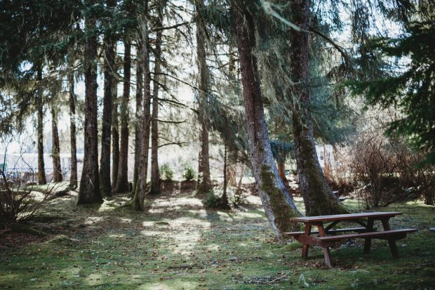 A Picnic Table at the Port Hardy RV Resort .