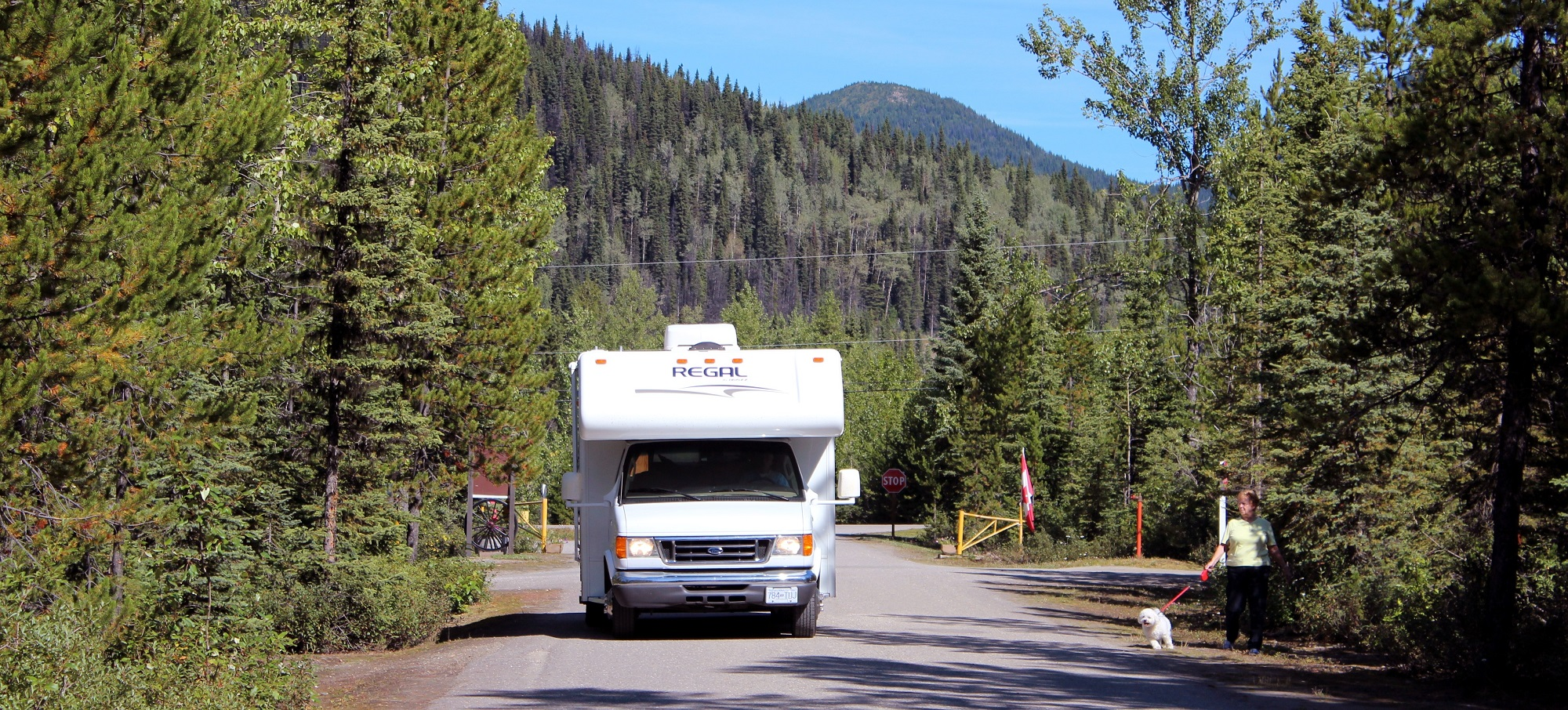 RV and Camper Rentals