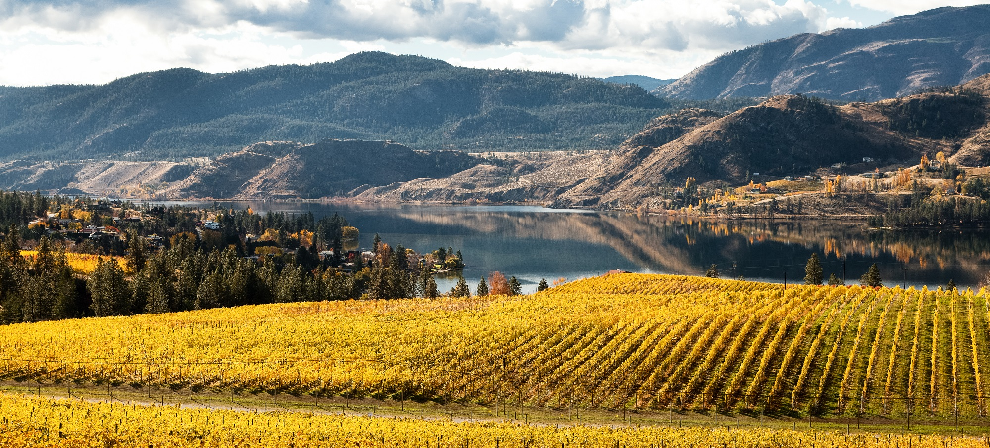 Thompson Okanagan