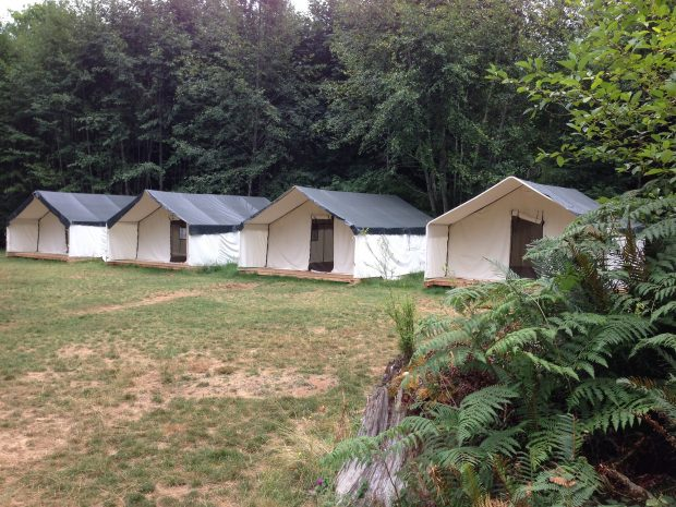 The tents at Horne Lake Campsite at Qualicum Beach.