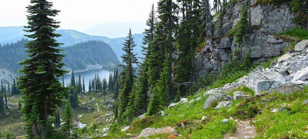Jade Pass Trail, Mt. Revelstoke