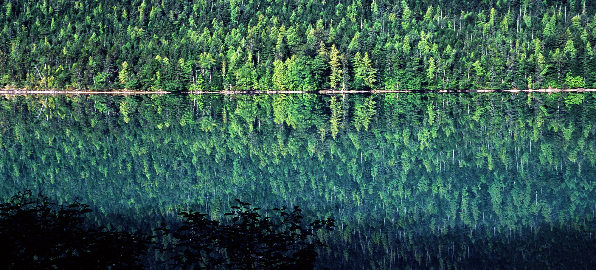 Dease Lake