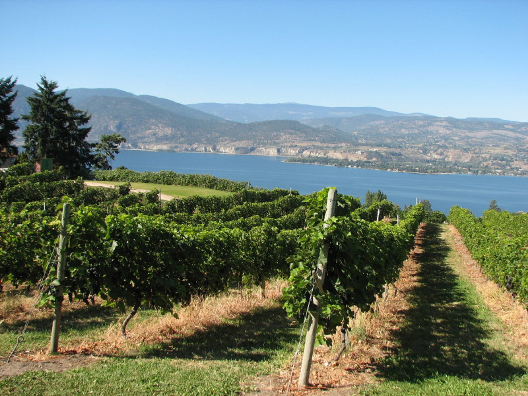 Penticton & Naramata, BC – Home of Sun, Sand, Watersports & Wineries