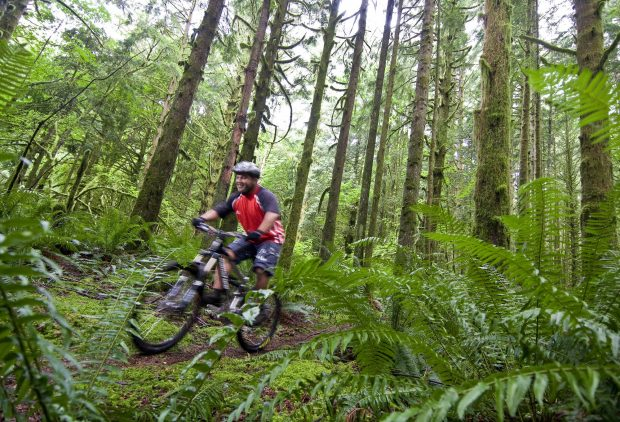 Bike Trails in Maple Ridge Photo Province of BC