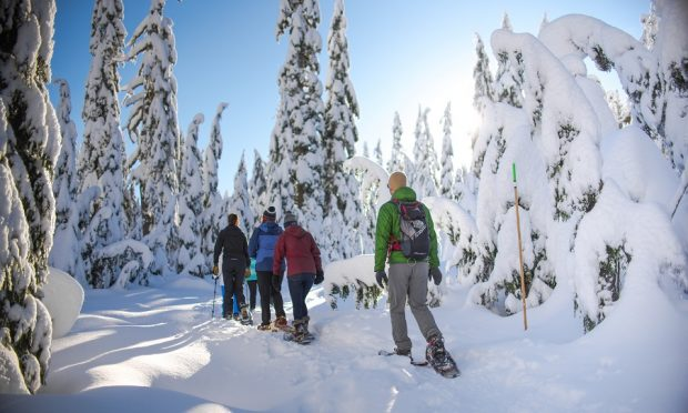 Photo: Mount Seymour