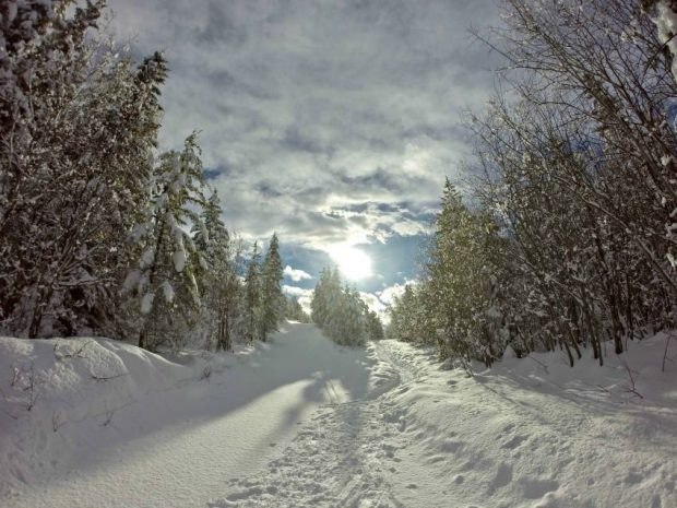 Telemark Nordic Centre, Kelowna via Facebook