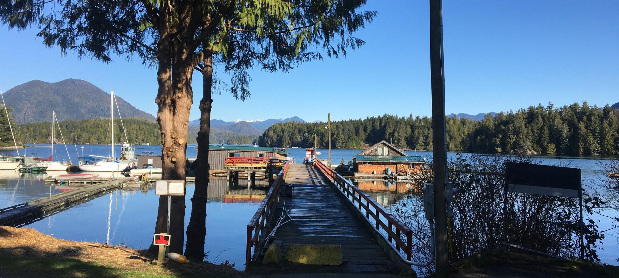 Hiking Meares Island, Tofino, British Columbia